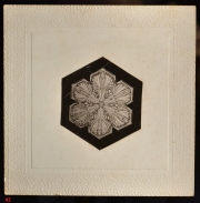 "View 4: ""Snowflakes"" by Wilson Bentley (1865-1931)"